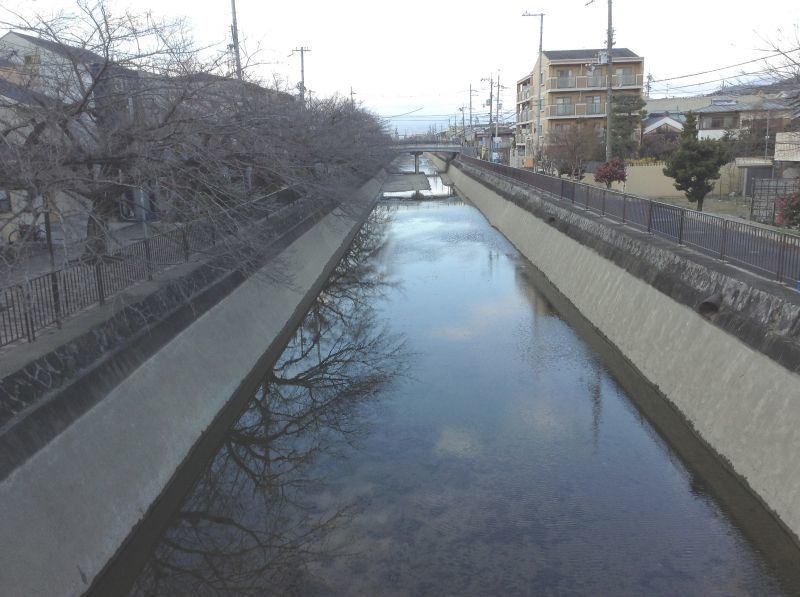 今日の琵琶湖疏水